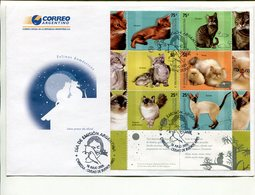 FELINOS DOMESTICOS, GATOS, DOMESTIC CATS,  DOMESTIQUES CHATS.  ARGENTINA AÑO 2005 SOBRE PRIMER DIA ENVELOPE FDC - LILHU - Gatos Domésticos