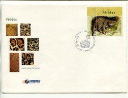 GATO MONTES FELIDOS, FELINOS FELINES FELINS. ARGENTINA AÑO 2001 SOBRE PRIMER DIA ENVELOPE FDC - LILHU - Felinos