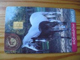 Phonecard Hungary - Horse - Hungary