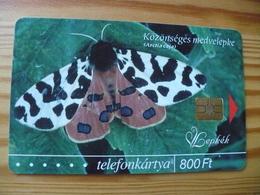 Phonecard Hungary - Butterfly - Hungary