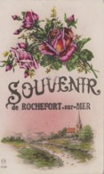 Rochefort-sur-Mer 17 - Fantaisie Souvenir De Rocherfort - Rochefort