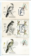 PRO INFANCIA, CALANDRIA CHINGOLO PAJAROS OISEAU BIRDS. ARGENTINA AÑO 1961 LOTE 9 TARJETAS FDC - LILHU - Pájaros