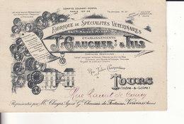 TOURS - J. GAUCHER & Fils - Fabrique De Spécialités Vétérinaires - Rue Jules Charpentier à Tours - - Tours