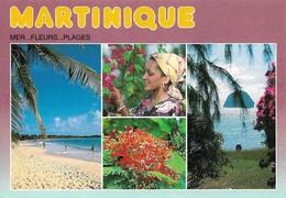 Martinique Mer Fleurs Et Plages (2 Scans) - Non Classés