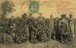 58 :Pouilly-sur-Loire : Les Vendanges  / A 490 - Pouilly Sur Loire