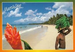 Martinique Sous Le Soleil Des Caraibes (2 Scans) - Non Classés
