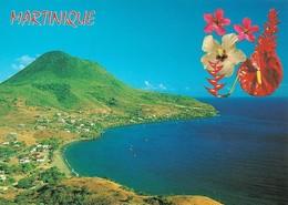 Martinique Petite Anse (2 Scans) - Le Marin