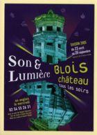 Son Et Lumière Château De Blois / Spectacle - Spectacle