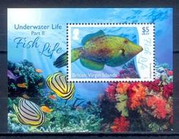 G101- British Virgin Island 2017. Fish. - Fishes
