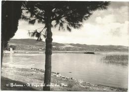W3923 Bolsena (Viterbo - Il Lago Dal Viale Dei Pini - Panorama / Viaggiata - Altre Città