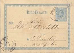 Pays-Bas, Entier Briefkaart Aan ... 5c Bleu (Guillaume III), Obl. Enschede Le 6 Feb 78 Pour L'Allemagne - Postal Stationery