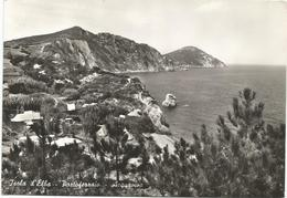 W3928 Portoferraio (Livorno) - Isola D'Elba - Acquaviva - Panorama / Viaggiata 1962 - Italia