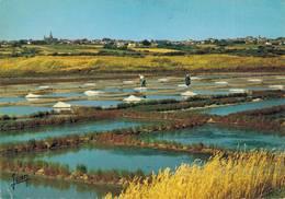 Guerande Marais Salants 1972   CPM Ou CPSM - Guérande