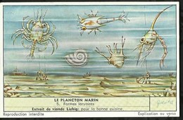 CHROMO LIEBIG . LE PLANCTON MARIN . FORMES LARVAIRES . - Liebig