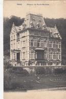 TROOZ / CHATEAU DU RYS DE MOSBEUX  1906 - Trooz