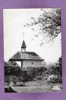 88 SAINT ETIENNE LES REMIREMONT La Chapelle Du Saint Mont   Saint Ame - Saint Etienne De Remiremont