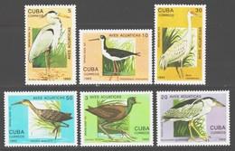 Cuba 1993 / Birds MNH Aves Vögel Oiseaux / Cu14216  41-26 - Pájaros