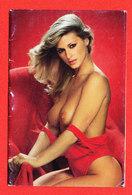 FEMME NU CALENDRIER 1983 J BREARD à EU * Format 10 Cm X 6.5 Cm - Calendriers