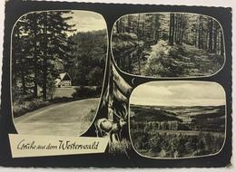 (131) Grüsse Aus Dem Westerwald - Panorama -  Een Hert - Souvenir De...