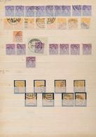 Bizone: 1945/1946, AM-Post-Spezialsammlung Gestempelt Nach Zähnungen Und Farben Sehr Reichhaltig Im - Zone Anglo-Américaine