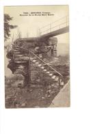 Cpa - 88 - SENONES - Escalier De La Roche Mère Henry - 7223 C. Lardier - - Senones