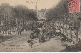 59 CAMBRAI  Place Au Bois  Marché Du 24 - Cambrai