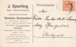 Germany Deutsches Reich J. SPERLING Saatzuchtwirtschaft DOMÄNE Buhlendorf GÜTERGLÜCK 1921 Card Karte Germania (2 Scans) - Briefe U. Dokumente