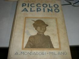 LIBRO PICCOLO ALPINO ILLUSTRATO DA PINOCHI -SALVATOR GOTTA - Old Books