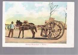 MALTA Maltese Mule Cart OLD POSTCARD - Malta