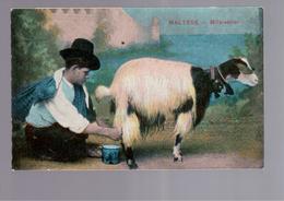 MALTA  Maltese - Milk Seller OLD POSTCARD - Malta