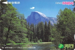 PAYSAGE - FORET - ARBRE - BOIS - LANDSCAPE - FOREST  - TREE - WOOD - Carte Prépayée Japon - Landscapes