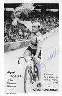 CARTE CYCLISME MIGUEL POBLET SIGNEE TEAM SPLENDID 1959 - Radsport
