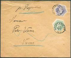 TG N°3A/4A Obl. Sc WELKENRAEDT Sur Lettre 'Express' Du 21 Novembre 1894 Vers Verviers. - TTB  - 14438 - Telegraphenmarken