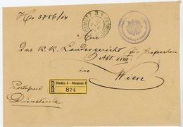 AUTRICHE ENV 1893 OLMUTZ OLOMOUC LETTRE RECOMMANDEE ETIQUETTE FRANCHISE - Storia Postale