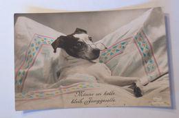"""""""Hund, Brille"""" 1910 ♥  - Ansichtskarten"""