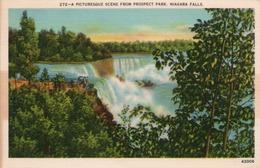 A PICTURESQUE SCENE FROM PROSPECT PARK-NIAGARA FALLS-NON VIAGGIATA - Niagara Falls