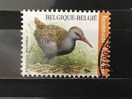 België / Belgium - Vogels, Waterral 2017 - Gebruikt
