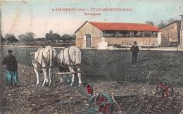¤¤  -  LIANCOURT   -   Etablissement BAJAC  -  Norvégienne  -  ¤¤ - Liancourt