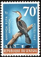 Senegal. 1968 :  Anhinga D'Afrique - Cigognes & échassiers