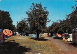 VIERZON Le Terrain De Camping 11(scan Recto-verso) MA1905 - Vierzon
