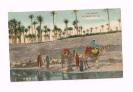 Le Caire.Au Bord Du Nil. - Cairo
