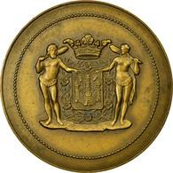Belgique, Médaille, Anvers, A.E.I.B Aan Ordinex, 1977, SUP, Bronze - Autres
