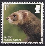 Great Britain 2010 - Mammals Of The UK - 1952-.... (Elizabeth II)