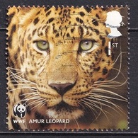 Great Britain 2011 - Fauna - The 50th Anniversary Of The WWF - World Wildlife Fund - Usados