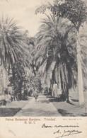 TRINIDAD: Palms Botanical Gardens - Trinidad