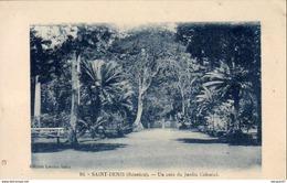 LA RÉUNION  SAINT DENIS  Un Coin Du Jardin Colonial - Saint Denis