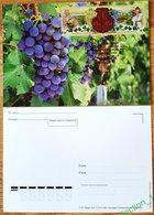 Russia 2019 MC Maximum Card Joint Issue Russia-Bulgaria Viniculture. Grape. Wine Vin - Wines & Alcohols