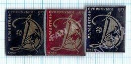 USSR / Badges / Soviet Union / UKRAINE / Football. FC Dynamo Kiev Is The Champion Of 1975. Cup. - Football