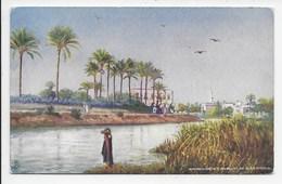 Mahmoudieh Canal, Near Alexandria- Tuck Oilette 7203 - Alexandria
