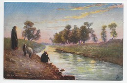 On An Irrigation Canal, Cairo - Tuck Oilette 7201 - Cairo